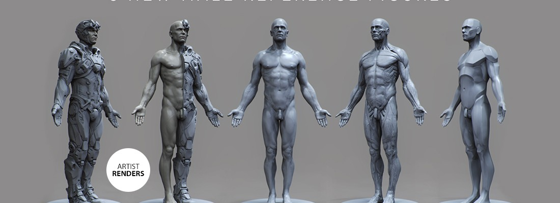 3dtotal Launches New Male Anatomical Reference Figures