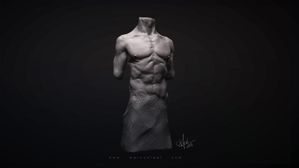 marcusLeal_anatomyExercise_male_Optimized