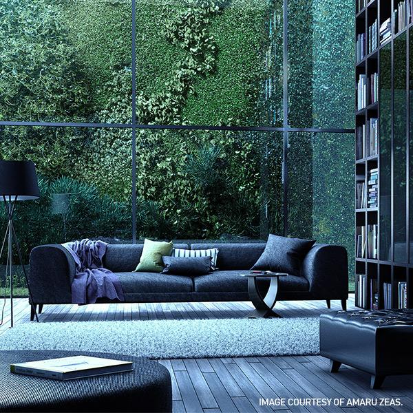 amaru_zeas_green-library