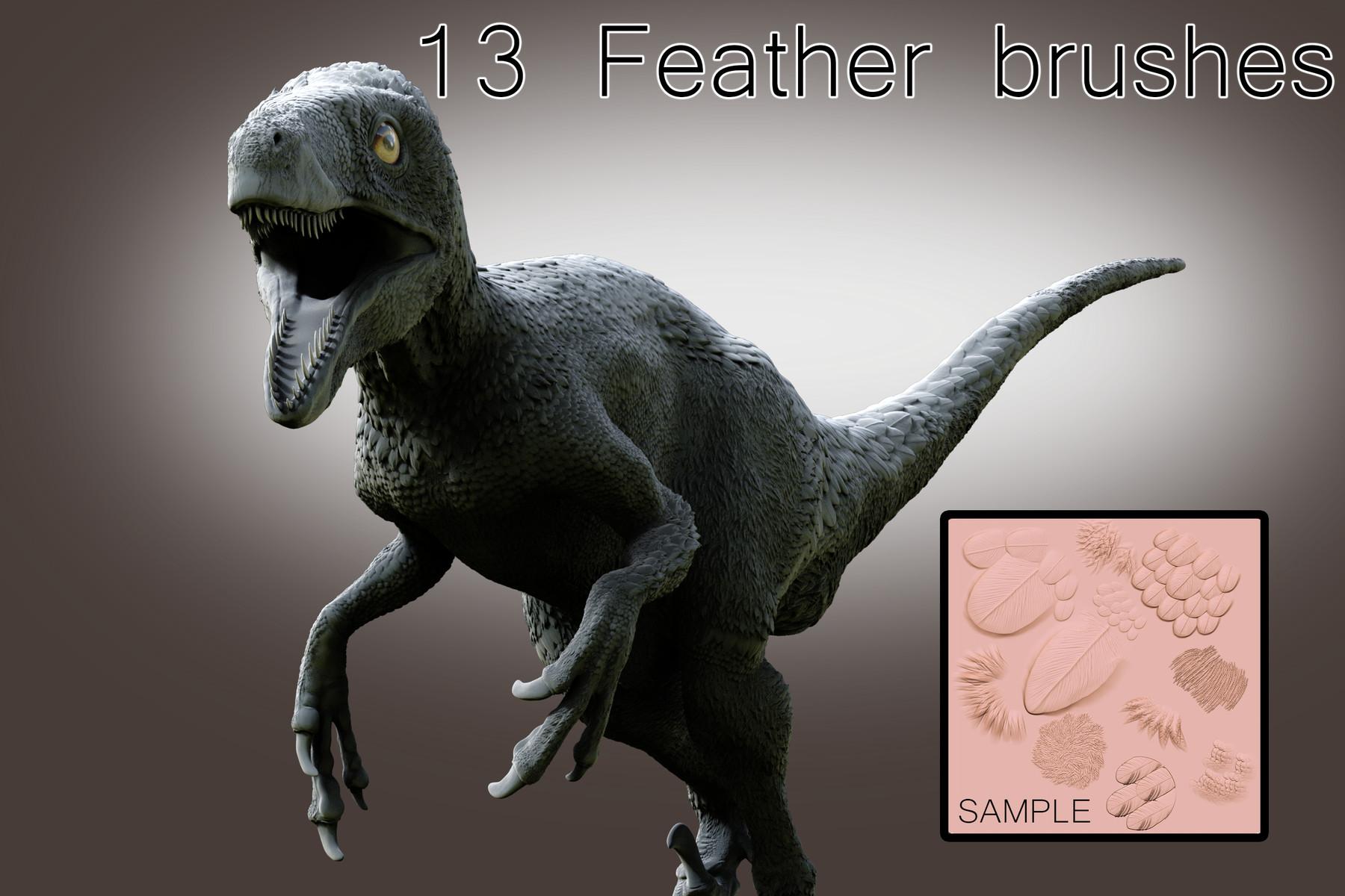 A feathery dinosaur