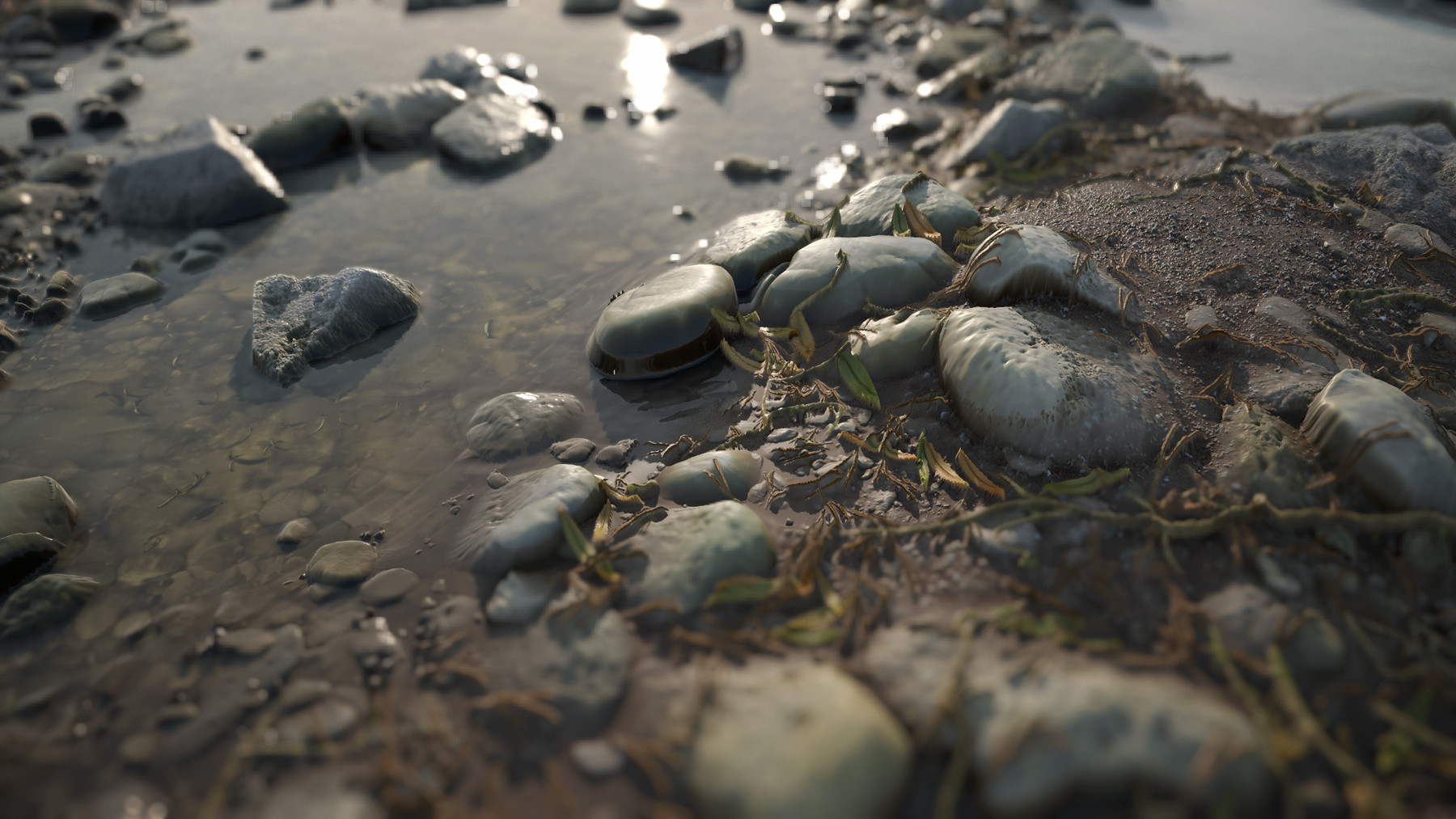 close up of realistic rocky biome