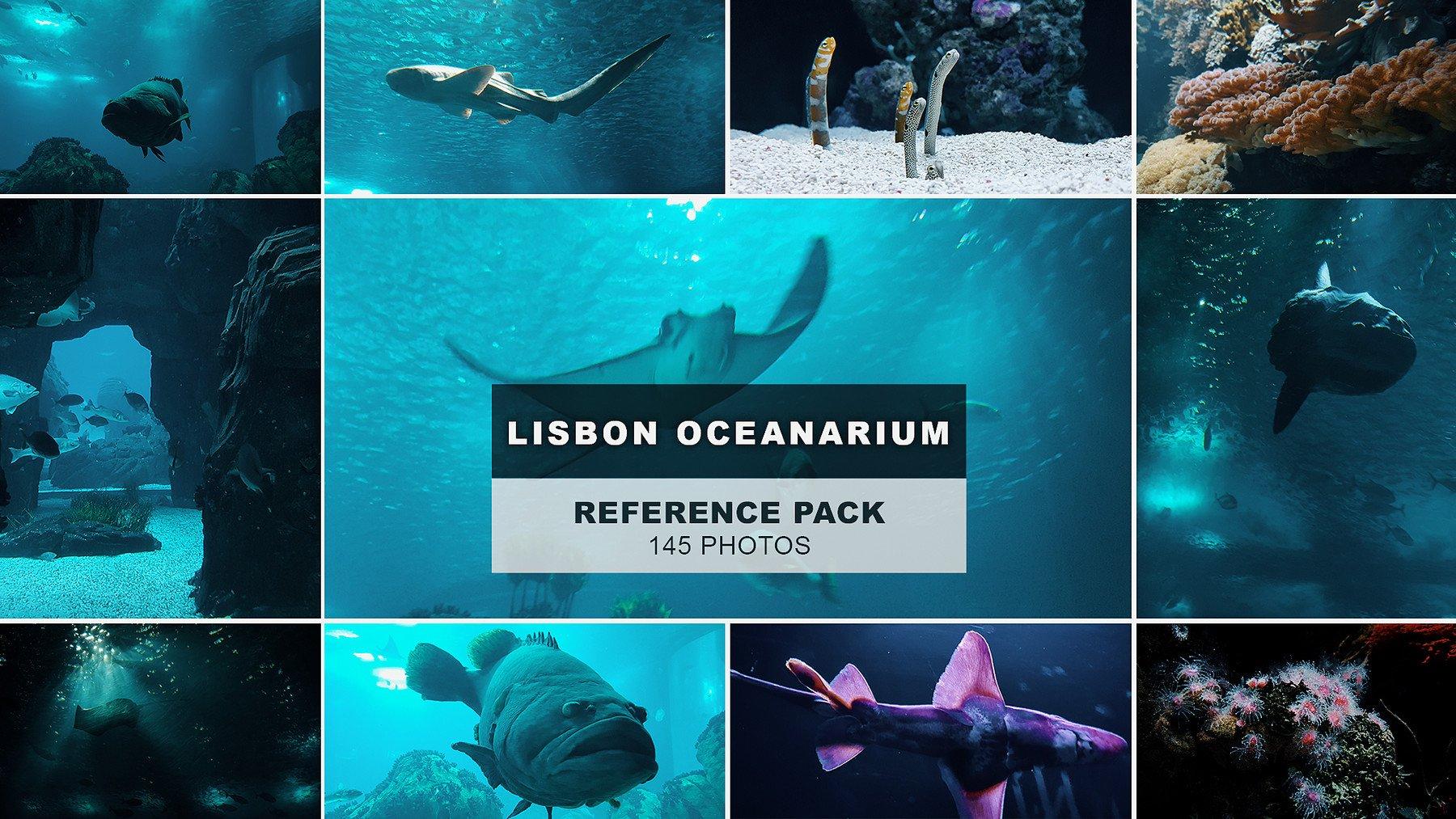 overview of the Lisbon Oceanarium pack